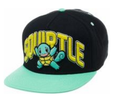 Pokemon pet Squirtle